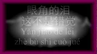 一个人想着一个人-曾沛慈(with lyrics/歌词 and han yu pin yin/汉语拼音)