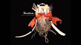 Bowerbirds-Hush