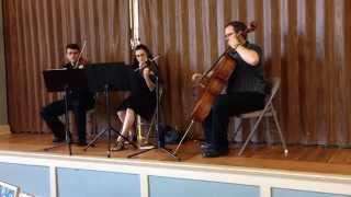 Hallelujah - String Trio Cover/ Sample