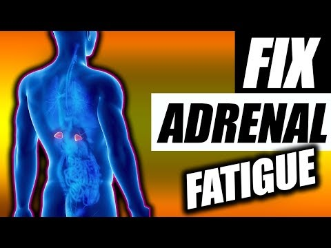 Adrenal Fatigue | What it is & How To Fix it