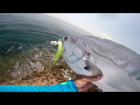 Queenfish Fly Fishing In The Thai Gulf