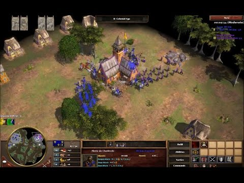 AoE III TAD - 1v1 online (French vs Russians)