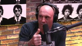 joe rogan experience 900 on fighting wesley snipes autism and obsessive personality