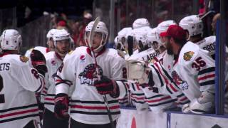 episode 7 between the benches 2015 calder cup playoffs rockford icehogs game 3