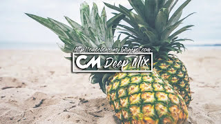 Deep House Mix 2017 [Mixed by @CMochonsuny] The Best Tropical & Deep House Hits