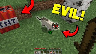This *EVIL* CAT PRANKED us in Minecraft! (Scary video!)