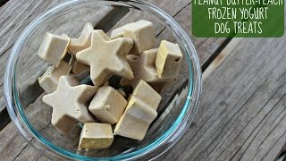 Peanut Butter-Peach Frozen Yogurt Dog Treats Recipe (Puppy Safe)