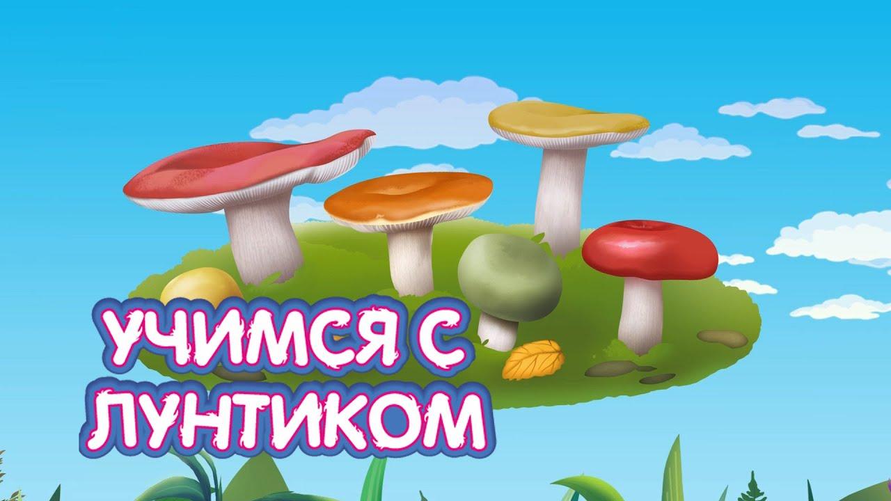 Раскраска Лунтик - Мультик про Грибы для детей - YouTube