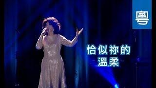 電視節目 TV1482 恰似祢的溫柔 (HD粵語) (演藝人系列)