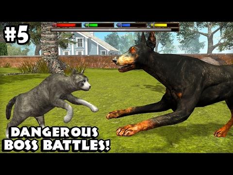 Ultimate Cat Simulator - Boss Battles - Android/iOS - Gameplay Episode 5