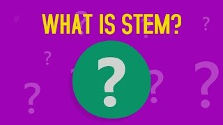 What is STEM?
