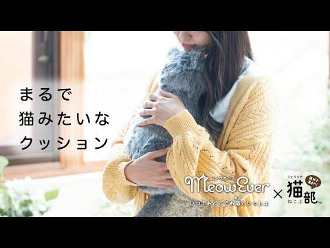 【PV】MeowEverミャウエバーまるで猫みたいなクッション