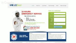 Mold Removal San Diego - Inspection, Testing, and More