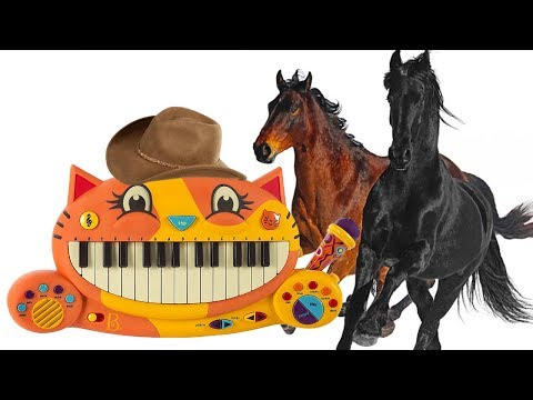 OLD TOWN ROAD BUT IT'S PLAYED ON A CAT PIANO