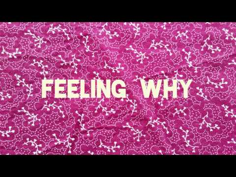 Feeling Why - Shuck Shuck