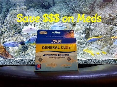 Medicate Your ENTIRE Fish Tank For A Fraction Of The Cost