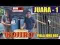 Roll Panjang Murai Batu  Kojiro  Juara  Piala Joko Bos  Mp3 - Mp4 Download