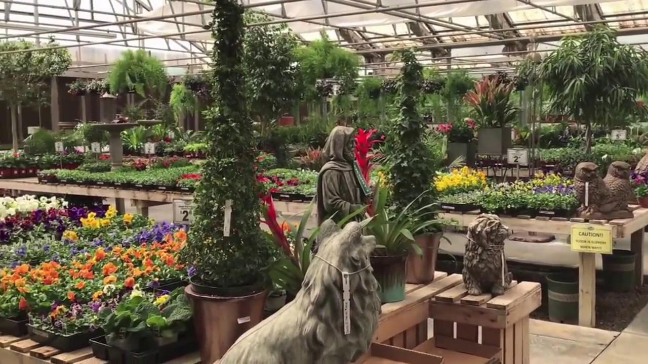 Hardy Boy Plant Customer Spotlight: Pete\'s Greenhouse - YouTube