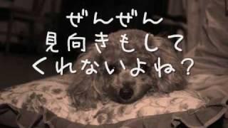 トイプードル犬 以前 「ありがとう」の題で、作りました。 今回は、その...