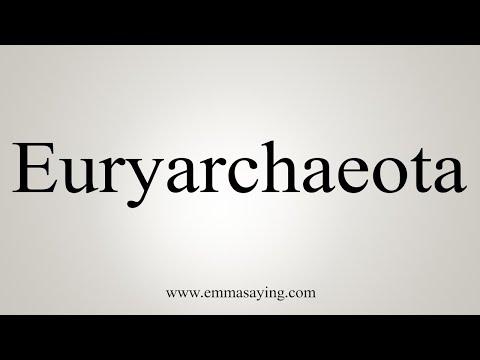 How To Pronounce Euryarchaeota