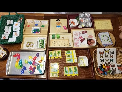 Montessori Inspired Activities for ages 2-6 yrs (11-28-17)
