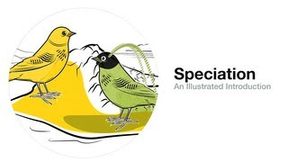 Speciation: An Illustrated Introduction