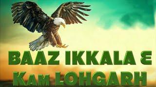 BAAZ (ਇਹ ਬਾਜ਼ ਇਕੱਲਾ ਹੈ ਇਸਦੇ ਮਗਰ ਨੇ ਬਹੁਤ ਸ਼ਿਕਾਰੀ ) - KAM LOHGARH & Ladhubhanie