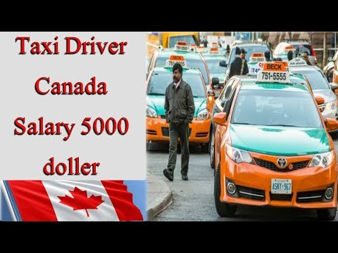 Taxi Driver need in Canada || Taxi driver Salary || Visa