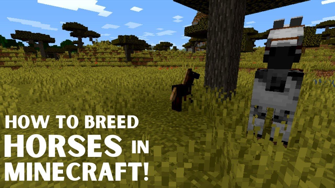 How To Breed Animals In Minecraft 7 Video Tutorials