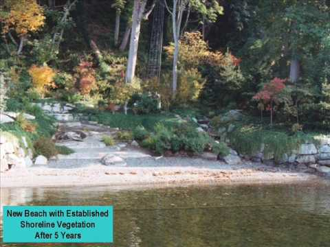 Waterfront Construction Shoreline Restoration & Plantings