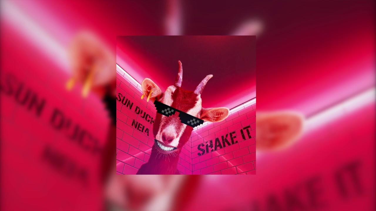 Sun Duck & Neia - Shake it