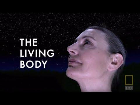 Внутри живого тела / National Geographic:Inside The Living Body (2007 г.)