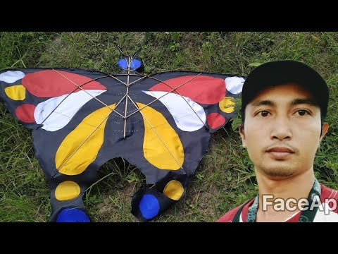 Layangan Kupu Kupu Tes Terbang Butterfly Kite Youtube