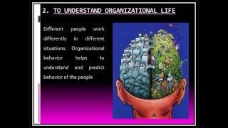 Nature Scope & Importance of Organizational Behavior(OB)