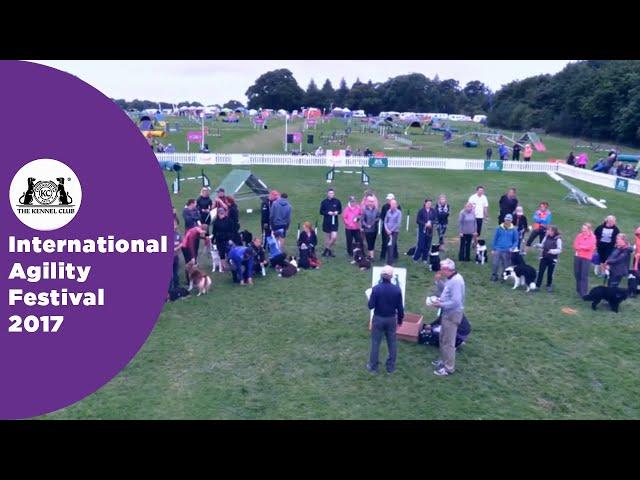 Olympia Quarter Final - G6-7 Senior Award Ceremony | International Agility Festival 2017