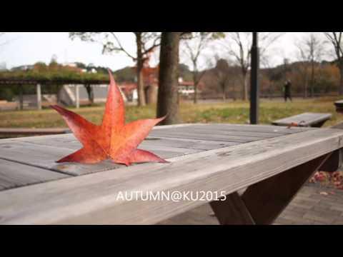 Autumn @ Kanazawa University 2015