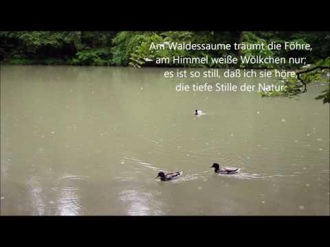 Theodor Fontane - Herr Ribbeck von Ribbeck im Havelland (Ballade)из YouTube · Длительность: 2 мин28 с