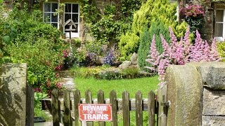 Click Subscribe for Gardening Advice with Sean James Cameron