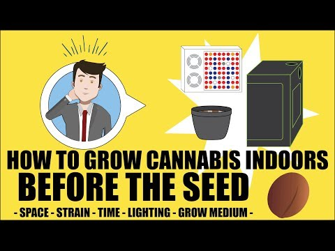 Before Germinating - How to grow marijuana course for dummies - Growing Cannabis Indoors 101