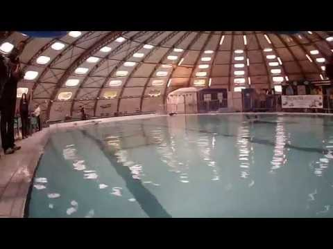 Mini dex piscine tournesol bourgoin jailleux 20 avril 2014 for Piscine tournesol