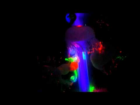 Artificial glowing jellyfish Mood Lamp [www.waterfallnow.com/jellyfish]