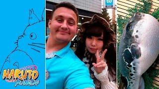 видео Музей аниме-студии Гибли в Токио