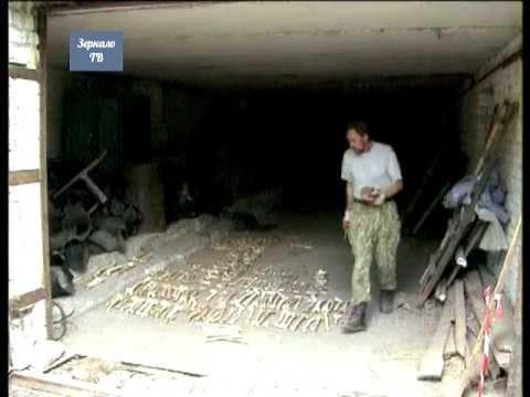 Волгоград. Поиск и эксгумация погибших солдат вермахта продолжается ... Репортаж