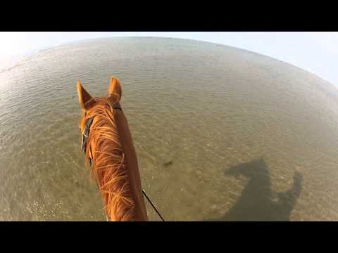 Horse Riding Dinas Dinlle Beach. GoPro Hero2