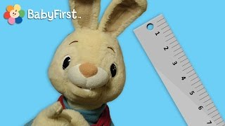Long and Short | Harry the Bunny | BabyFirstTV
