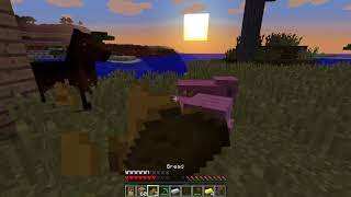 Minecraft Tutorial: How to Make a Noob House cover with Woods
