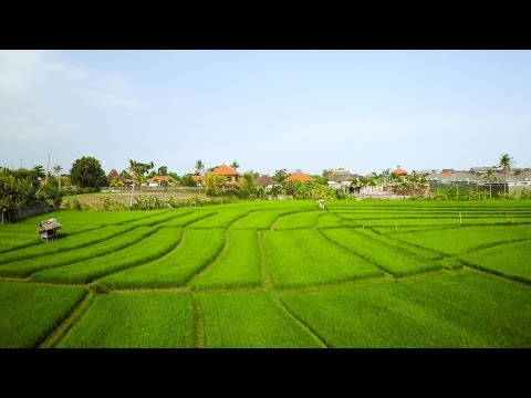 ONE DAY IN INDONESIA   Aerial Drone Video in 4K