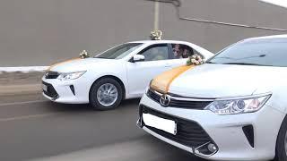 Авто на свадьбу в Волгограде +7(961)090-80-80 украшения для свадебных машин