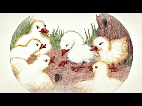 Бабушкины сказки - Гадкий утенок | Мультфильмы для детей