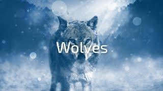 🎵Selena Gomez & Marshmello - Wolves (Said The Sky Remix)🎵[Chill Remix]
